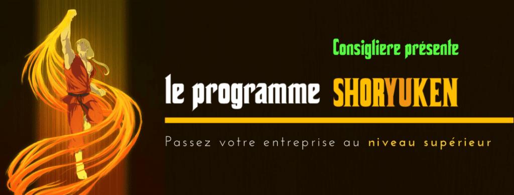 Banniere Programme Shoryuken - Christian Monteiro - Consigliere SAS